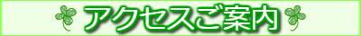 access-infobana